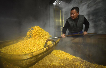 A look at production process of corn wine in central China's Hubei